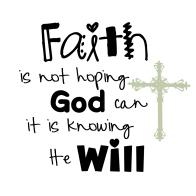 trust god will